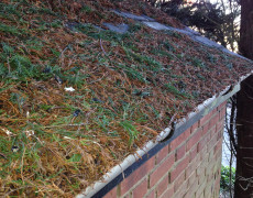 leaves cleared, roof and gutters cleaned Norfolk